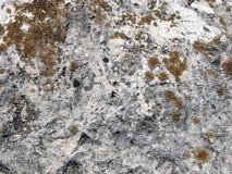 De textuur van de steen Gedetailleerde oppervlakte van de oude lichte steen met rode korstmossen Royalty-vrije Stock Foto's