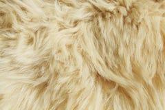 De textuur van de wol Royalty-vrije Stock Afbeelding