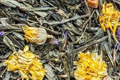 de textuur van droge groene thee met paardebloembloemen, achtergrond van de de drankabstractie van het close-up de kruideningredi royalty-vrije stock afbeelding