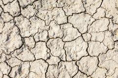 De textuur van de grond met barsten Stock Foto