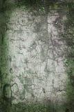 De textuur van Grunge van muur Stock Fotografie