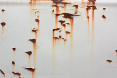 De textuur van Grunge van witte de plaatcorrosio van het bladmetaal Royalty-vrije Stock Foto