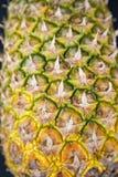 De textuur van het ananasfruit Royalty-vrije Stock Afbeeldingen