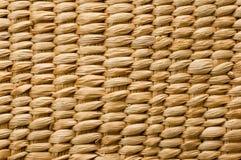 De textuur van het bamboe Stock Fotografie