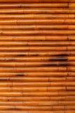 De textuur van het bamboe Royalty-vrije Stock Foto's