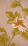 De textuur van het behang Royalty-vrije Stock Foto's
