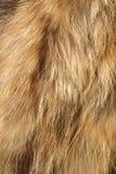 De textuur van het bont stock fotografie