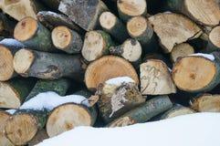De textuur van het de winterhout royalty-vrije stock afbeelding