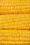 De textuur van het graan royalty-vrije stock foto
