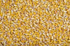 De textuur van het graan Royalty-vrije Stock Afbeeldingen