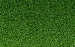 De Textuur van het gras Stock Afbeelding