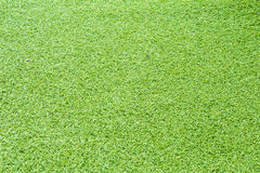 De textuur van het gras Royalty-vrije Stock Fotografie