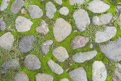 De textuur van het gras en van de steen Stock Afbeeldingen