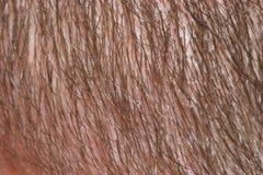 De textuur van het haar Royalty-vrije Stock Foto
