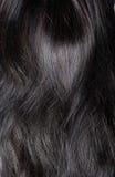 De textuur van het haar Stock Afbeelding