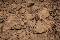 De textuur van het moddervuil Droog gebarsten aarde stock foto