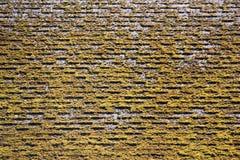 De textuur van het mosdak met tegels grunge royalty-vrije stock afbeelding