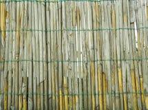 De textuur van het riet Royalty-vrije Stock Foto's