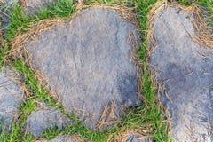 De textuur van het steenvoetpad met groen rond gras stock foto