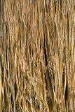 De Textuur van het stro Stock Afbeelding
