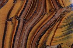 De textuur van het tijgeroog Stock Foto's