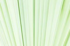 De textuur van het verlof Royalty-vrije Stock Fotografie