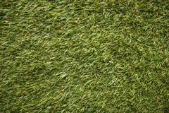 De textuur van het voetbalgazon, golfcursus, maakte gazon, groen goed-verzorgd gras in orde stock afbeeldingen