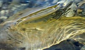 De textuur van het water Stock Afbeeldingen