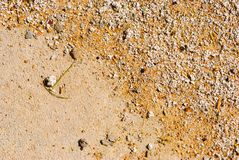 De textuur van het zand Bruin zand Achtergrond van zand Gele kleurenversie Stock Fotografie