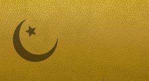 De textuur van de huid Close-up van huidtextuur Leerproducten royalty-vrije stock afbeelding