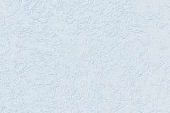De textuur van de kever van de pleisterschors stock afbeeldingen