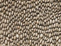De textuur van kiezelstenen Stock Afbeelding