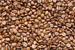 De textuur van koffiebonen Stock Afbeeldingen