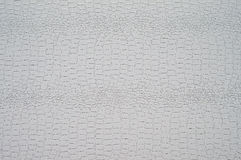 De textuur van lichte krokodilhuid Stock Afbeelding