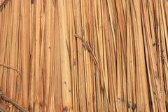 De textuur van met stro bedekt dak Stock Foto