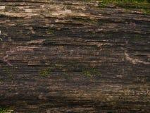 De textuur van oud hout royalty-vrije stock fotografie