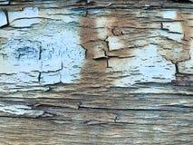 De textuur van oud, oud, rot, gebarsten, dilapidated, dilapidated, geschilderde, gezwelde verf van een schil geweven boom met hor royalty-vrije stock afbeeldingen