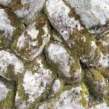 De textuur van oude steenmuur behandelde groen mos Royalty-vrije Stock Afbeeldingen