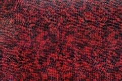 De textuur van purpere krokodilhuid Stock Afbeelding