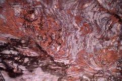 De textuur van de steen in het Nabatean-hol stock afbeeldingen
