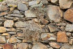 De textuur van de steen Natuurlijke bergsteen in de bos mos-Behandelde stenen in de bosgranietstenen dicht omhoog royalty-vrije stock foto