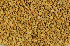 De textuur van stuifmeelkorrels Stock Foto's