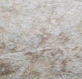 De textuur van weefsel Royalty-vrije Stock Foto's