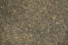De textuurachtergrond van de steenweg Stock Foto