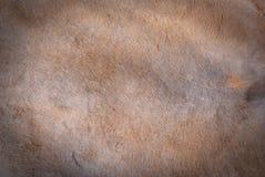 De textuurachtergrond van het kangoeroebont Stock Afbeeldingen