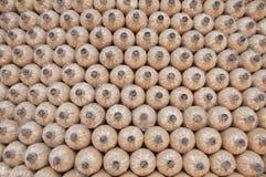 De textuurpaddestoel van Cylindical in landbouwbedrijf Stock Foto