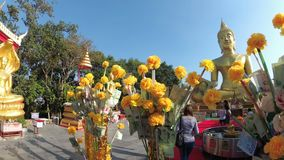 De Thaise Bomen van het Schenkingsgeld in Tempel van Grote Gouden Boedha, Pattaya thailand stock videobeelden