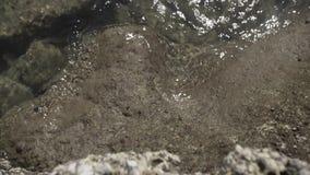 De Thaise golven in de rotsen verzegelen natuurlijk getijde, geologisch Australië, kromme, erosie, vorming stock video