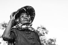 De Thaise levensstijl van omalandbouwers Stock Fotografie