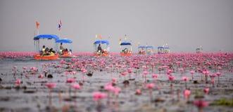 De Thaise toerist neemt boot het bezoeken overzees van rode waterlelie Royalty-vrije Stock Afbeeldingen